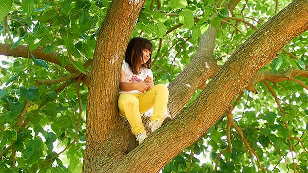 Green emotions - Pujar a un arbre